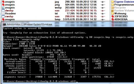 google webp image standard converter 460x287 WebP   Googles Bildformat Konkurrent gegen JPG/PNG